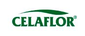 Celaflor